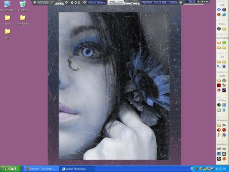 flowerfaerie-desktop by Chris-T