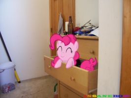 pinkie pie! by wolfgangthe3rd