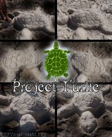 Project Turtle by DEFYxxNORMALITY
