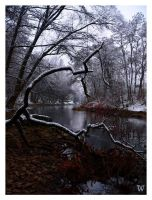 Its Wintry Face by Wohmatak