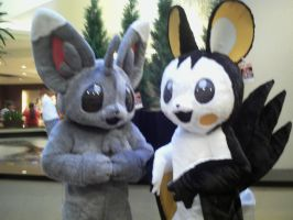 Emolga and Mincinno by MariSanomaFanFic