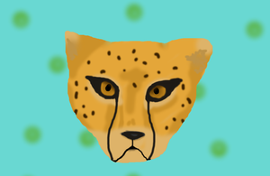 Cheetah by coolsillvergal