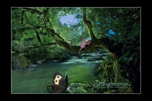 Quite Please.... by FairieGoodMother