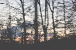 In Motion. by TheZoMbieMoshPiT