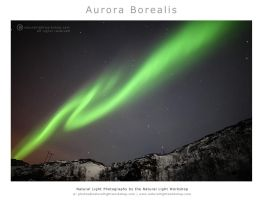 Aurora Borealis by naturallightworkshop