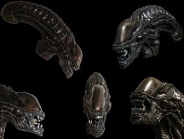 Xenomorph sculpture - final by VA-Wolf