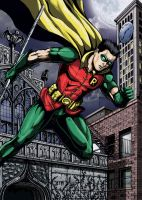 Robin Protector of Night by leandro-sf