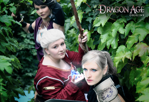 Dragon Age: Origins  - On our way I by LadyTenebraeTabris