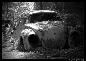 Cars vs. nature 8 by slipandslidesuicide
