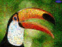 Mosaic Toucan by andreaplanet