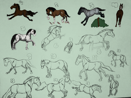 15 Mares WIP - ALL MARES - EDIT by Abarrelhorsegirl