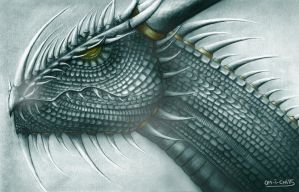 The Dragon King by Mitheriel