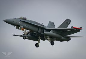 F18 of the Finnish Air Force by Brandzai