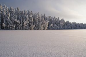 Land of whiteness by Wolverica