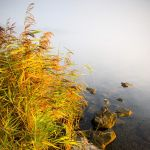Colors of autumn by darthenjoy