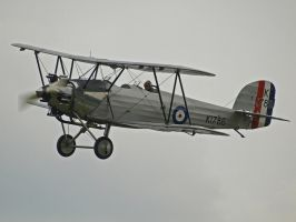 Hawker Tomtit 4 by davepphotographer