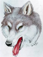 Wolf portrait by LARvonCL