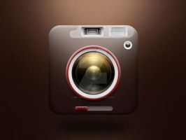 brown camera icon by meffer-design