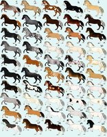 50 Horse Designs for Sale! by emmy1320