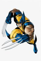 Wolverine in Colors by ShibaInuBR