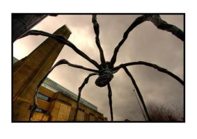 Spider by yellownoise