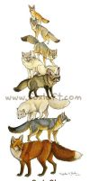 Fox Stack by Foxfeather248