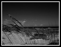 St. George Island4 by sees2moons