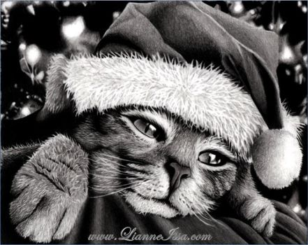 Christmas kitty by Lianne-Issa