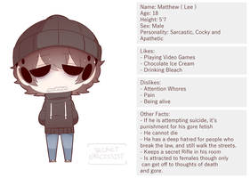 Suicide Siblings: Lee Ref Sheet by SecretNarcissist