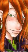 HP . Bill Weasley . detail by porotto