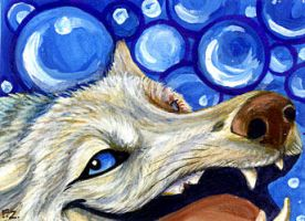 Wolfpearl ACEO by Foxfeather248