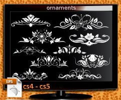 ornaments Illustrator cs4  cs5 by roula33