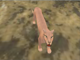 Freakish hairless cat on fh by Wolfeffect