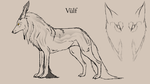 Vulf by DuckToes