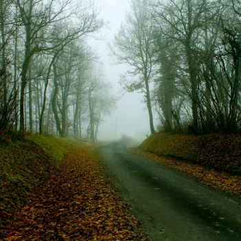 Road To Nowhere by TaNgeriNegreeN1986