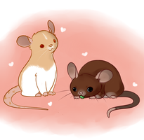 My Ratties by bruxing