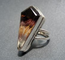 Coffin Ring by dravensinferno