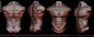 Male Torso by Abducted47