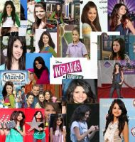 Selena Gomez Collage by icingcake