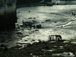low tide by caithuniverse