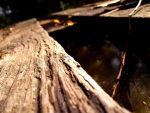 Old wooden bridge by ACEDesign666