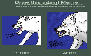 2009 to 2012 by WhiteWolfCrisis13