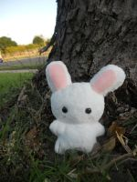 Bunny Plushie by Love-Who
