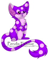 Perolis Felidae - 1 [CLOSED] by BusyBeingClever