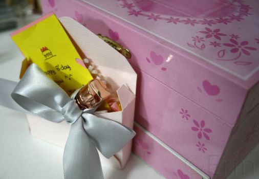 Gift Packaging 02 by Erin1392