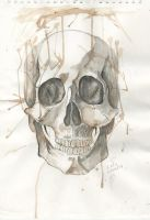 skull by admirvnce