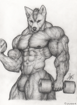 Dingo Workout by Jugg4