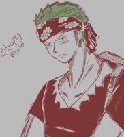 Roronoa Zoro Strong World by MarikIshtarLove
