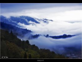 Fog_7 by Marcello-Paoli