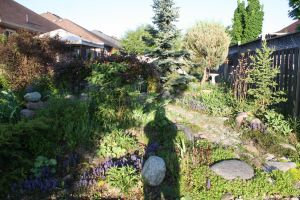 Morning Shadow In The Garden by KeswickPinhead